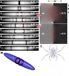 Oscillating soliton/vortex ring