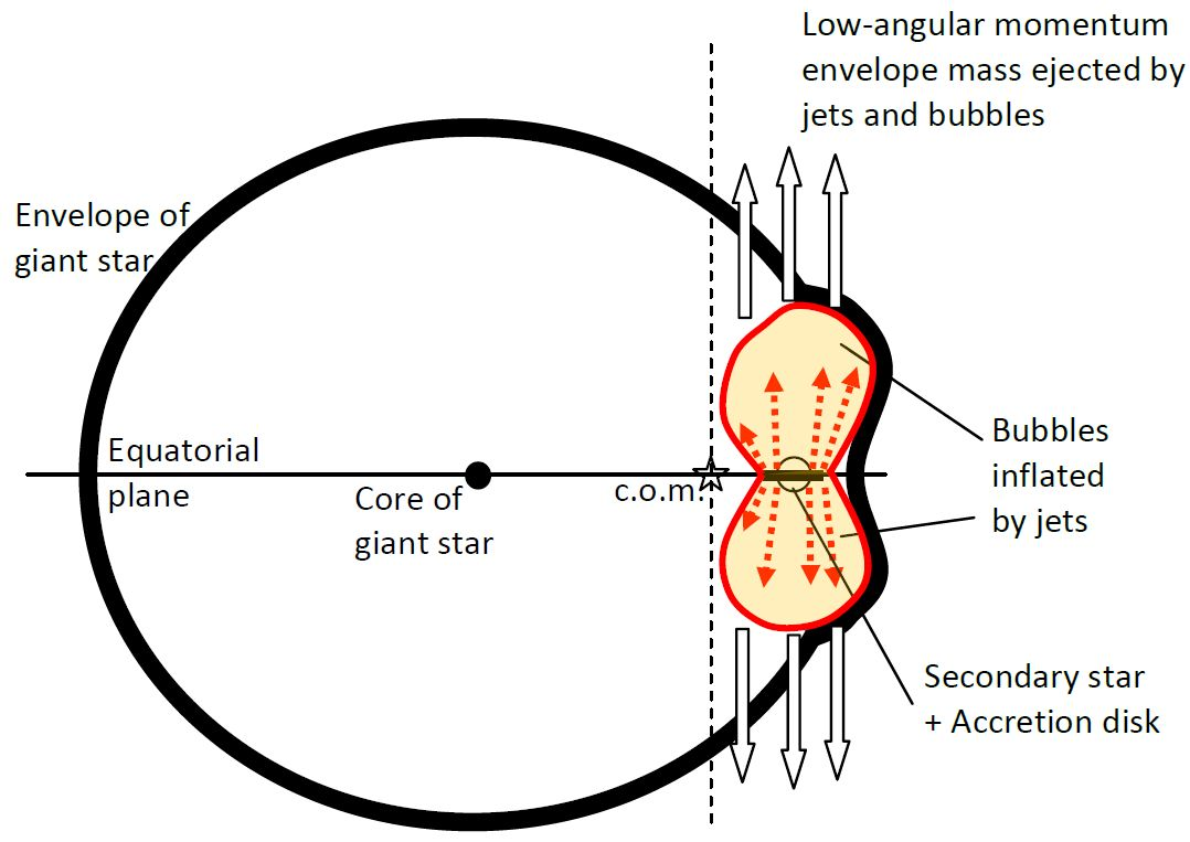 Schematic drawing of the grazing envelope evolution with jets launched by the secondary star.