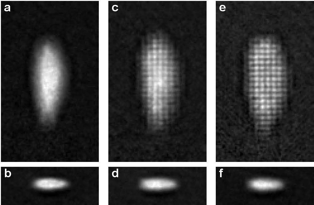 World's first in situ lattice with tunneling and single-site resolution
