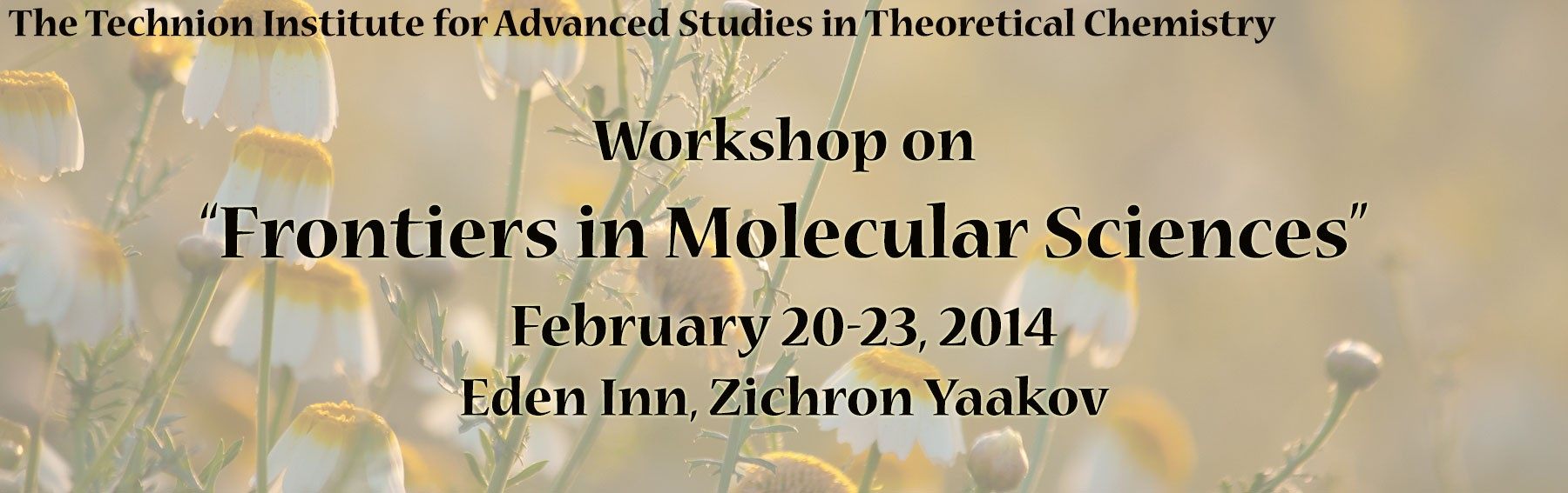 frontiers_in_molecular_sciences_2014