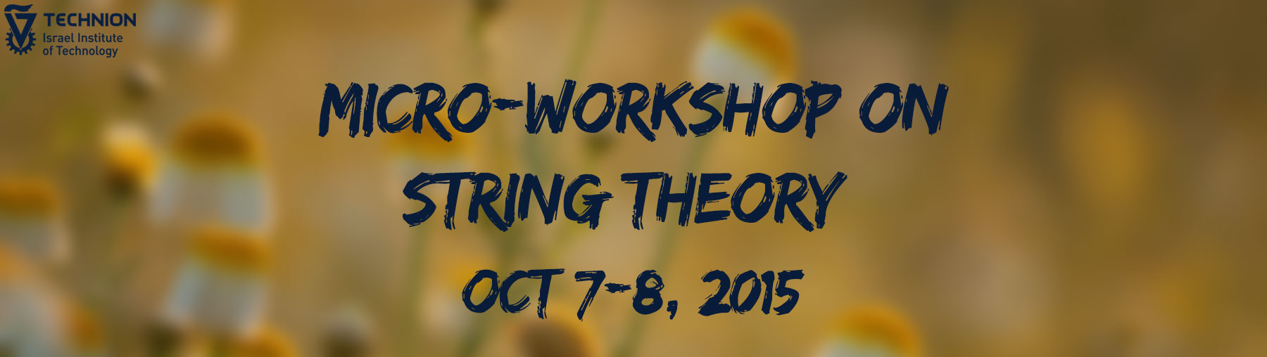 micro-workshop on string theory, october 7-8 2015