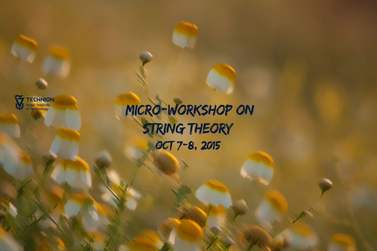 micro-workshop on string theory